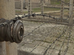 Auschwitz Barbwire Fence 01 - stock footage