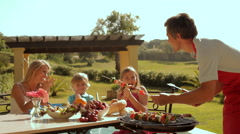 family barbecue - stock footage