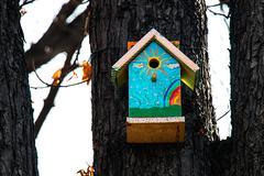 Birdhouse on a tree - stock photo