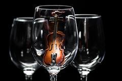 Violin in wine glass Stock Photos