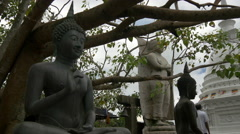 Buddhism statues under a tree at the Simamalaka shrine Stock Footage