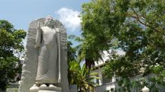 Aukana buddha statue in Colombo, Sri Lanka Stock Footage