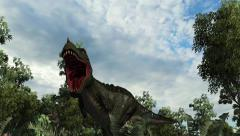T-Rex Tyrannosaurus Dinosaur roars - 4k - stock footage