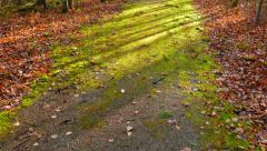 The Path before Me - stock footage