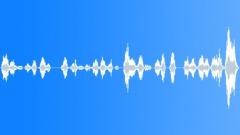 Children playing rhyme polish Sound Effect