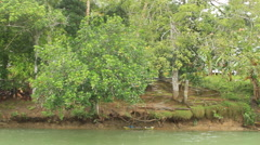 Southeast Asian jungle river Stock Footage