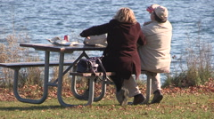 Two older people sitting at picnic table and one suffers a fall Stock Footage