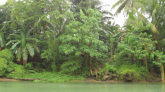 Loboc River in the Philippines Stock Footage