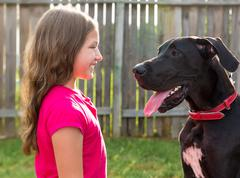 Great dane and kid girl looking eachother profile Stock Photos