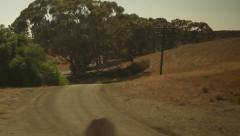 Traveling on train, looking out window viewing trees & grass-21 Stock Footage