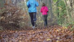 People legs jogging in autumn forest HD Stock Footage