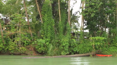 Secluded home on a jungle river - stock footage