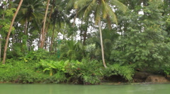 Southeast Asian River jungle Stock Footage
