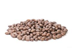 pile of unshelled rich brown pecan nuts - stock photo