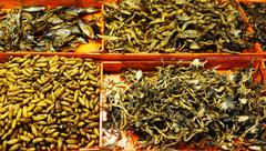 fried insects - stock photo
