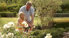 Grandfather helping granddaughter learn to ride a bike in park. - stock footage