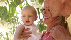 Grandparents and baby granddaughter playing in garden by flowery shrub. - stock footage