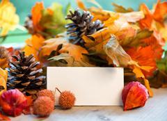 blank place card amongst autumn foliage - stock photo