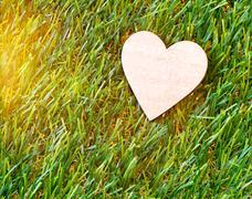 Wooden heart on grass lit by sunbeam Stock Photos