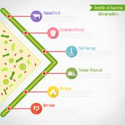 Benefits of bacteria infographics, vector eps10 Stock Illustration
