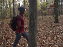 Young woman trekking in autumn forest, super slow motion, 240fps NTSC Stock Footage