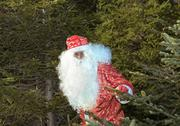Stock Photo of santa claus in wood near a fur-tree