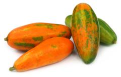 Red pointed gourd Stock Photos