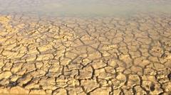 Drought Mudcracks or desiccation cracks Stock Footage