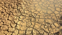 Drought Mudcracks or desiccation cracks Stock Footage