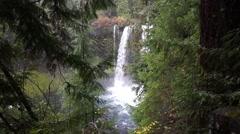 Koosah Falls, Willamette National Forest, Oregon Stock Footage
