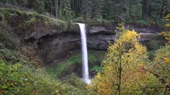South Falls, Silver Falls State Park, Oregon Stock Footage