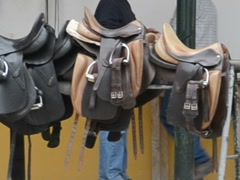 Saddles for horses. Related clips are in my portfolio in 1920x1080. Stock Footage