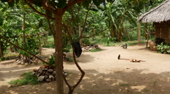 Tilt to a clay house at the countryside of Sri Lanka Stock Footage
