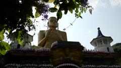 Tilt from the Golden Temple of Dambulla, Sri Lanka - stock footage