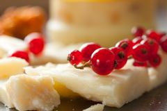 cheese and redcurrant - stock photo