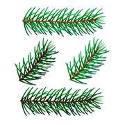 illustration of four spruce twigs - stock illustration
