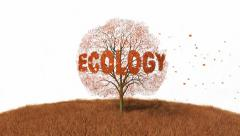 Ecology text on the tree, falling leaves Arkistovideo