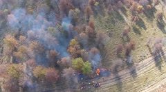 Controlled Burn, fire and smoke in the woods seen from the air Stock Footage