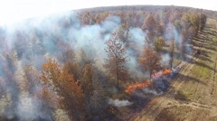 Prescribed fire in the woods seen from the air Stock Footage