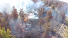 Aerial view of smoke and flames burning a wooded area Stock Footage