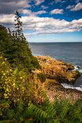 View of cliffs and the atlantic ocean in acadia national park, maine. Stock Photos