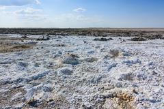 endless salt pan botswana, kubu island, africa. minerals from prehistoric lak - stock photo