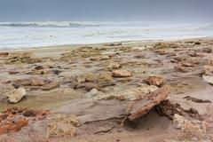 Rocky shore skeleton coast namibia, africa. where the desert meets the atlant Stock Photos