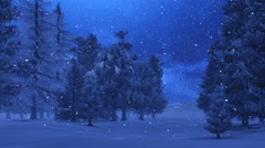 Snowfall in the pine wood at night Stock Footage