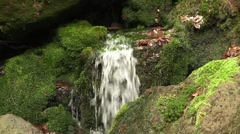A source in the mountain Stock Footage