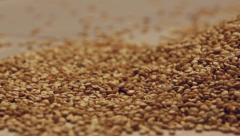 Rotating quinoa seeds Stock Footage