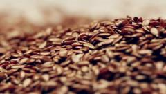 Rotating flaxseeds Stock Footage