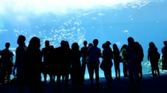 Huge aquarium with marine life and silhouettes of visitors Stock Footage