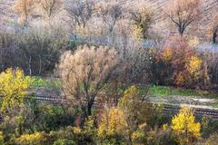 Colorful autumn trees, road and rail Stock Photos
