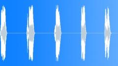 Spring summer fall winter norm choir Sound Effect